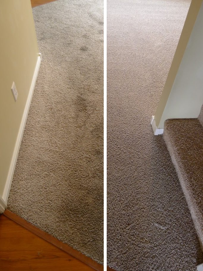 carpet-cleaning-key-biscayne