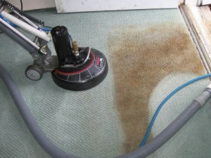 carpet-cleaning-coconut-creek