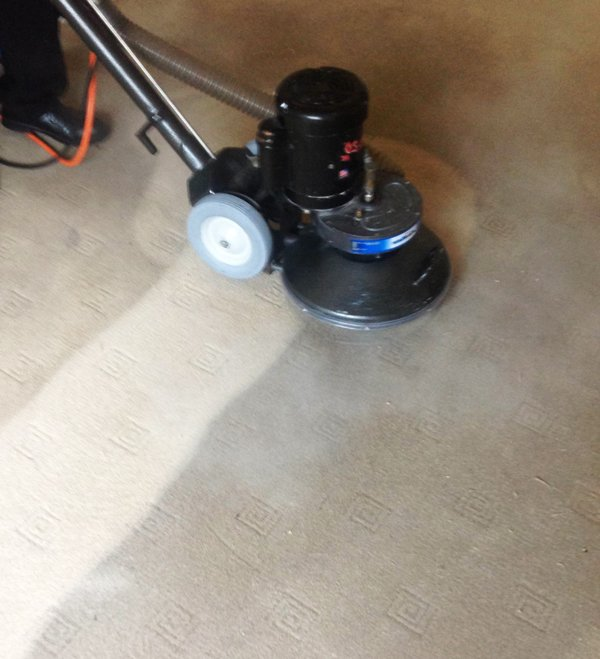 carpet-cleaning-coconut-grove