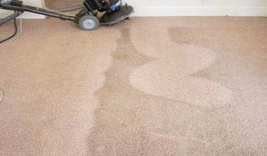 carpet-cleaning-plantation