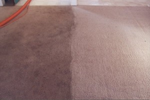 carpet-cleaning-south-miami