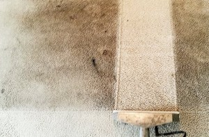 carpet-cleaning-lighthouse-point