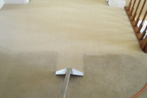 carpet-cleaning-sunny-isles-beach