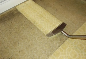 carpet-cleaning-surfside