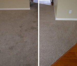 carpet-cleaning-hillsboro-beach