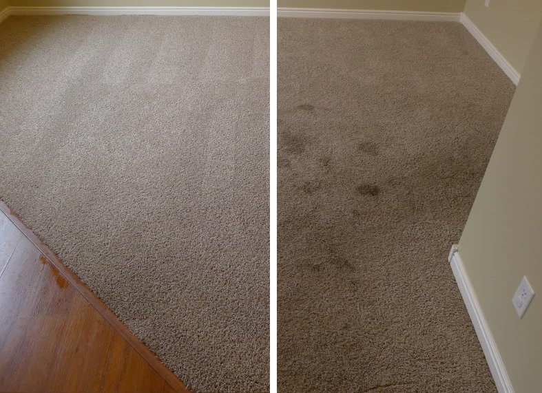 carpet-cleaning-sea-ranch-lakes